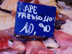 Fresh Kill For Sale