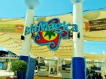 Welcome to Isla Magica
